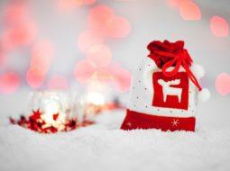 Idee regalo di Natale fai da te